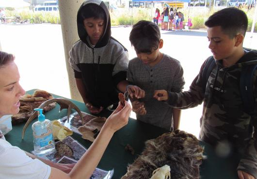Students learning about wildlife at Fun Run 2019